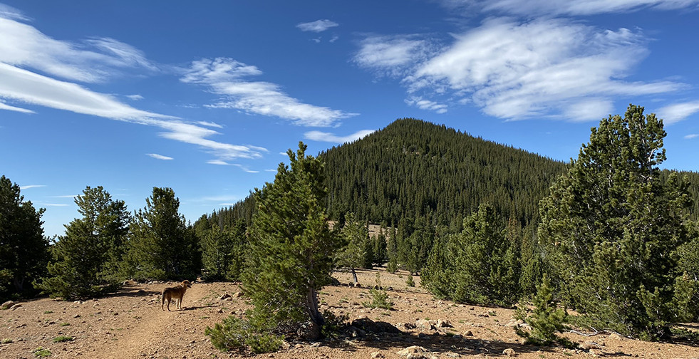 Mount Rosa