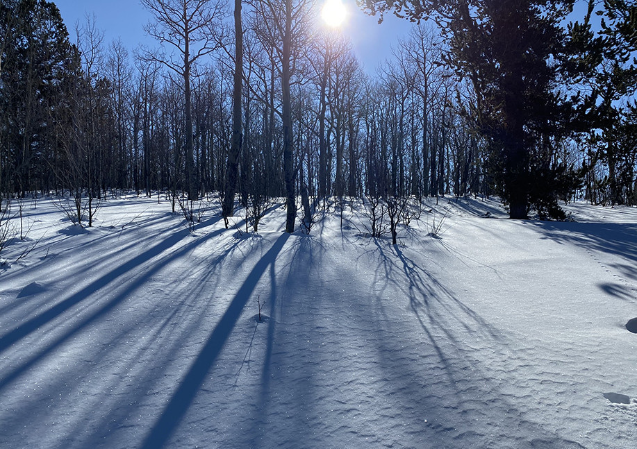 Sparkles off the Snow