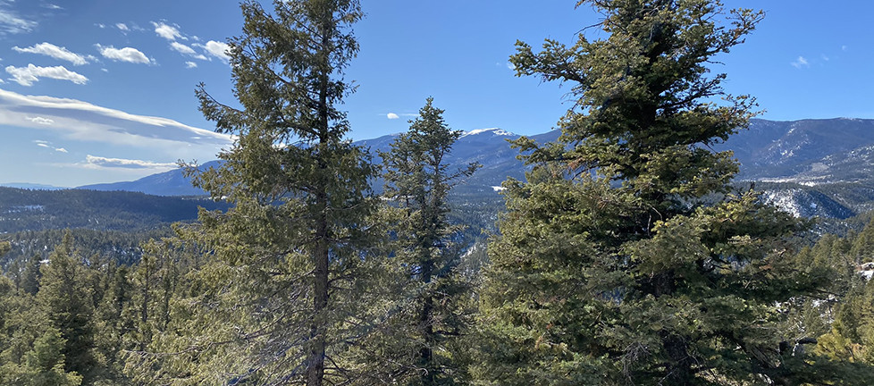 San Carlos Trail Rocky Mountains