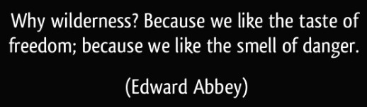 desert solitaire by edward abbey - wilderness quote