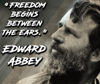 desert solitaire by edward abbey - freedom between the ears