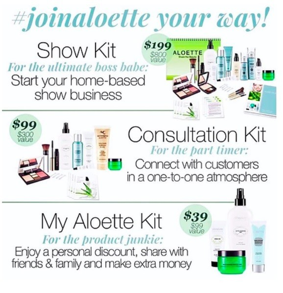 Aloette Consultant review starter kit