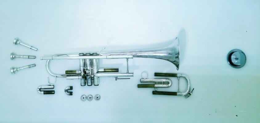 Trumpet Underwater