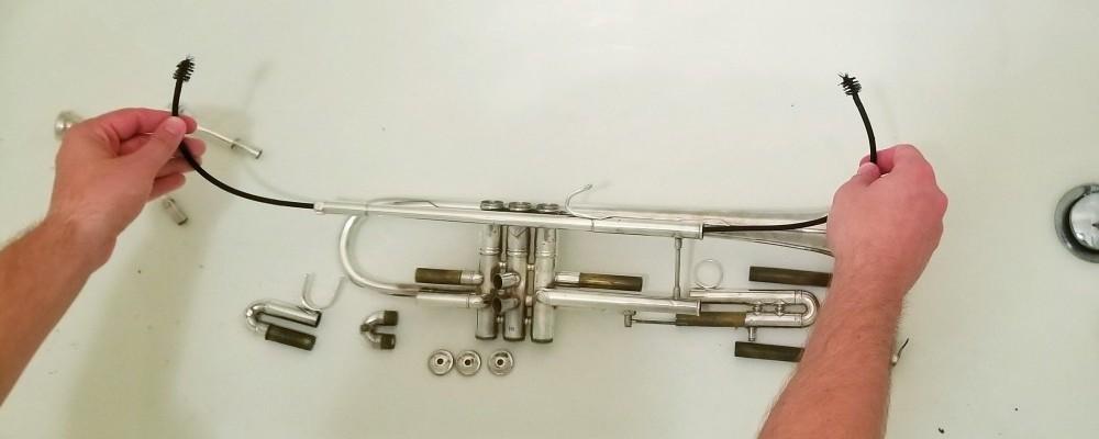 Trumpet Snake