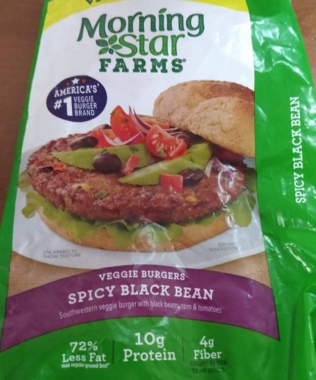 Morning Star's Veggie Burger - Spicy Black Bean Burger