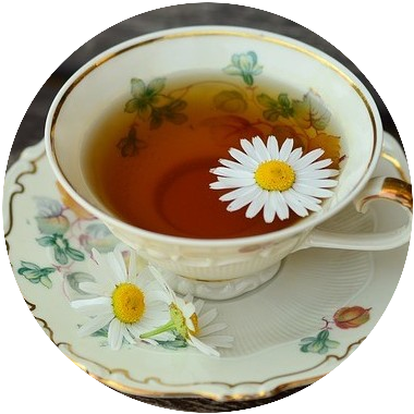 Chamomile is a flower widely used in teas