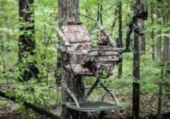 This is an image of a climbing deer stand 5 Deer Hunting Tips and Tricks to See More pressured Deer!