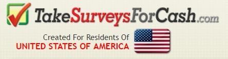 The Take Surveys For Cash Banner