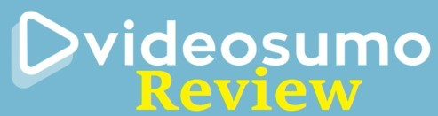 This is a graphic that asks what is Video Sumo in this review
