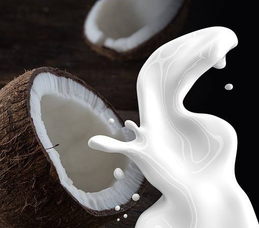 coconut milk allergy