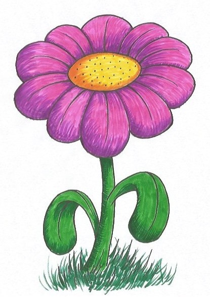 Easy Flower Drawing - Step Seventeen