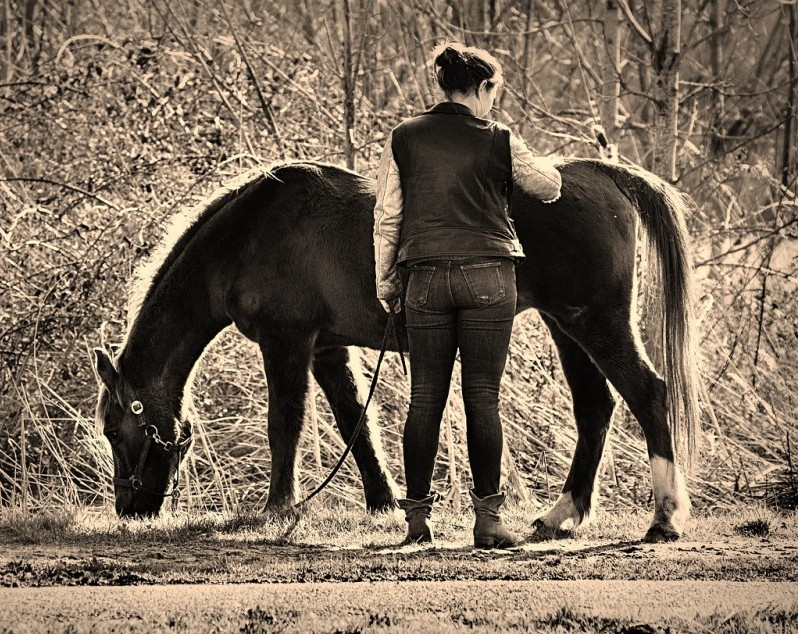 Horse and human grazing