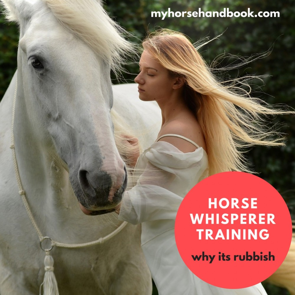 Horse Whisperer Training graphic