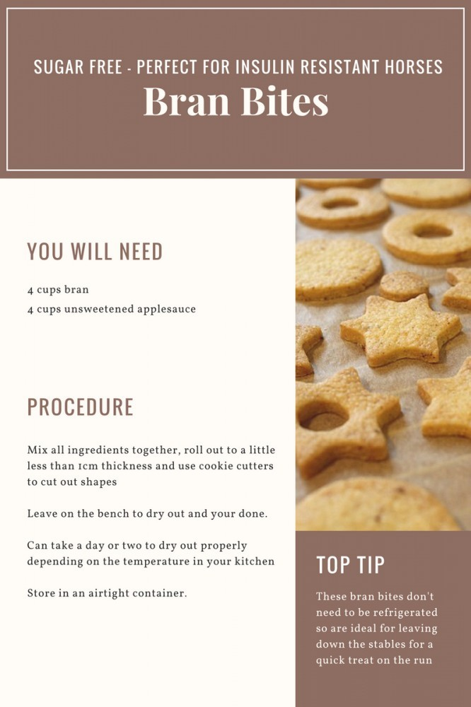 how to make homemade horse treats
