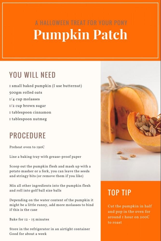 Pumpkin Patch - Horse Treats Recipes