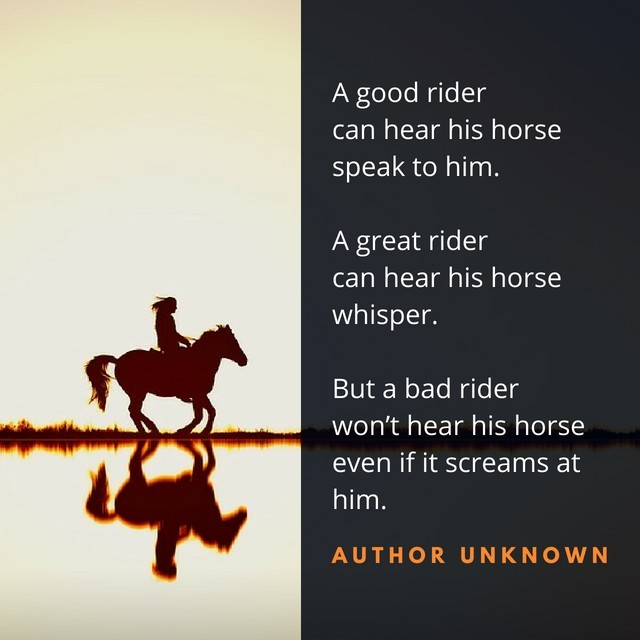 Horse listening quote