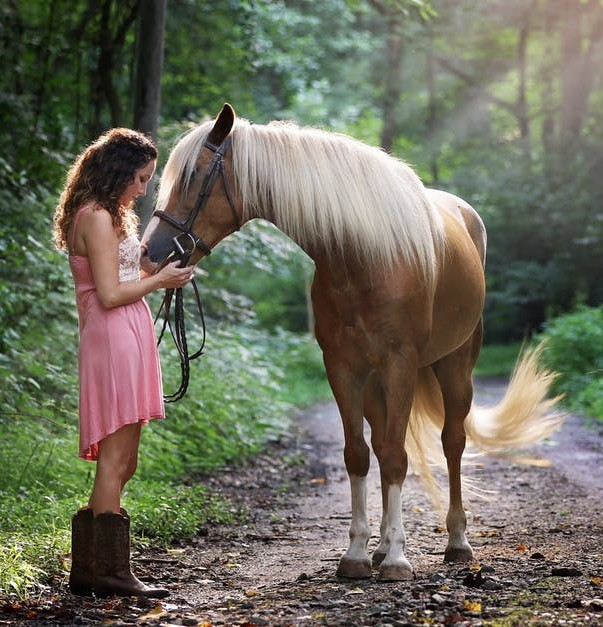 Girl and horse in forest