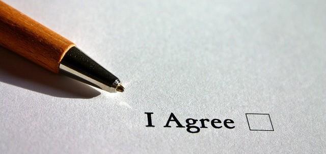 Horse Partnership Agreement