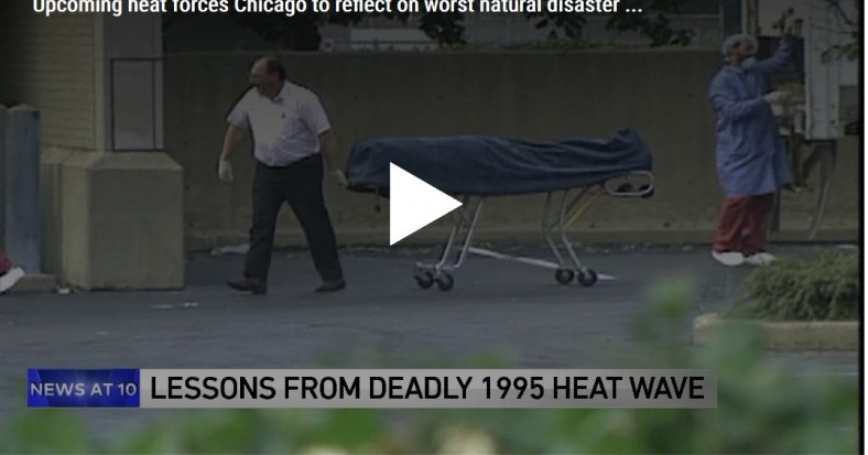WGN9 News Coverage