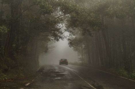 Car driving down a foggy road.