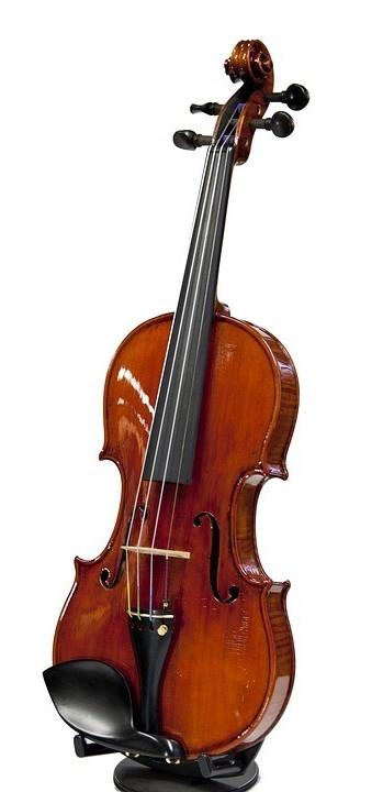 Violin music instrument