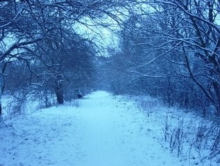 Path of Peace with snow