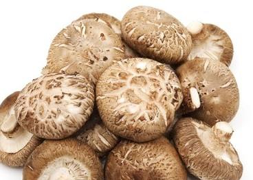 Dairy free Mushroom thyme soup recipe
