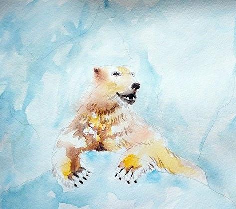 What's In Greenland? - Polar Bear