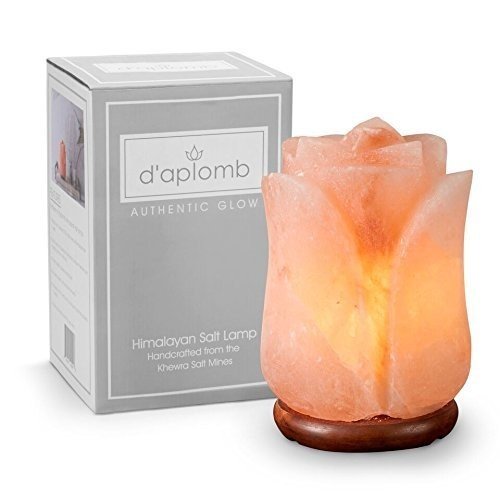 This 8lb salt lamp is hand carved to the shape of a flower.