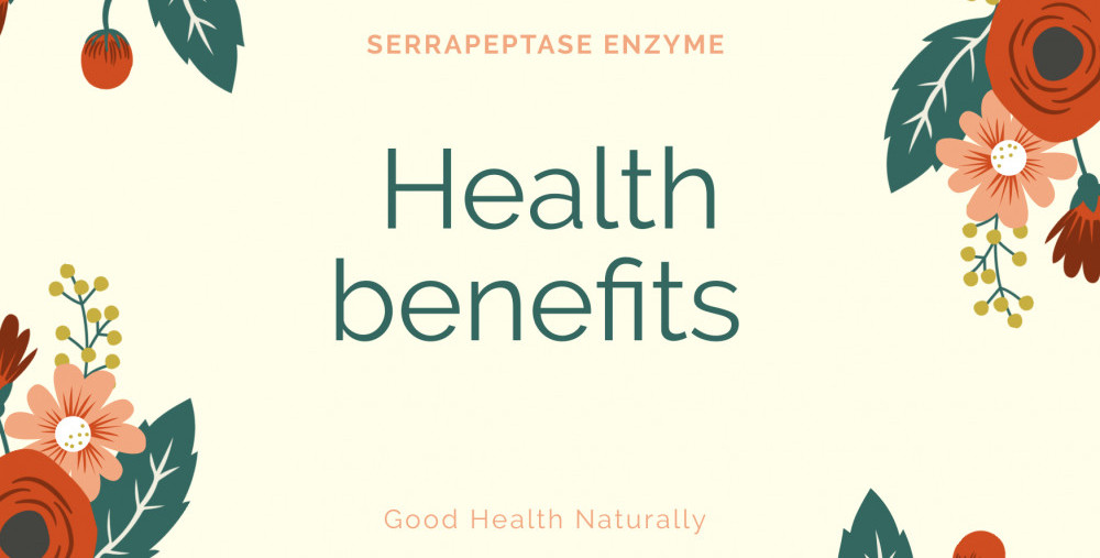 What is a Serrapeptase enzyme
