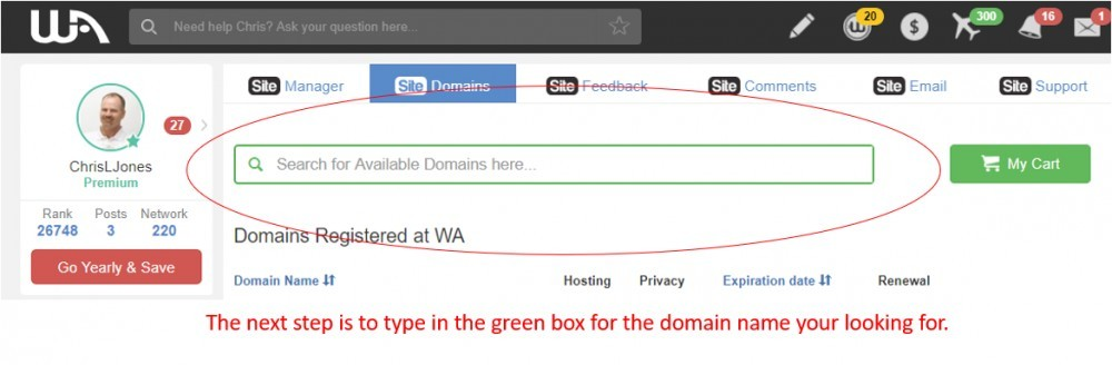 Step Two to register a domain name