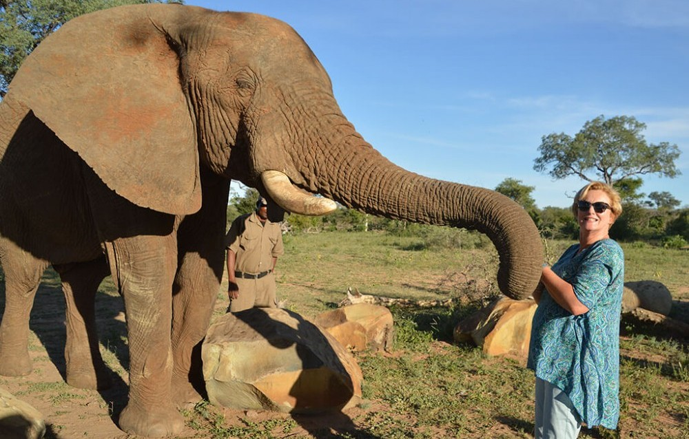 Elephant Experience at Camp Jabulani