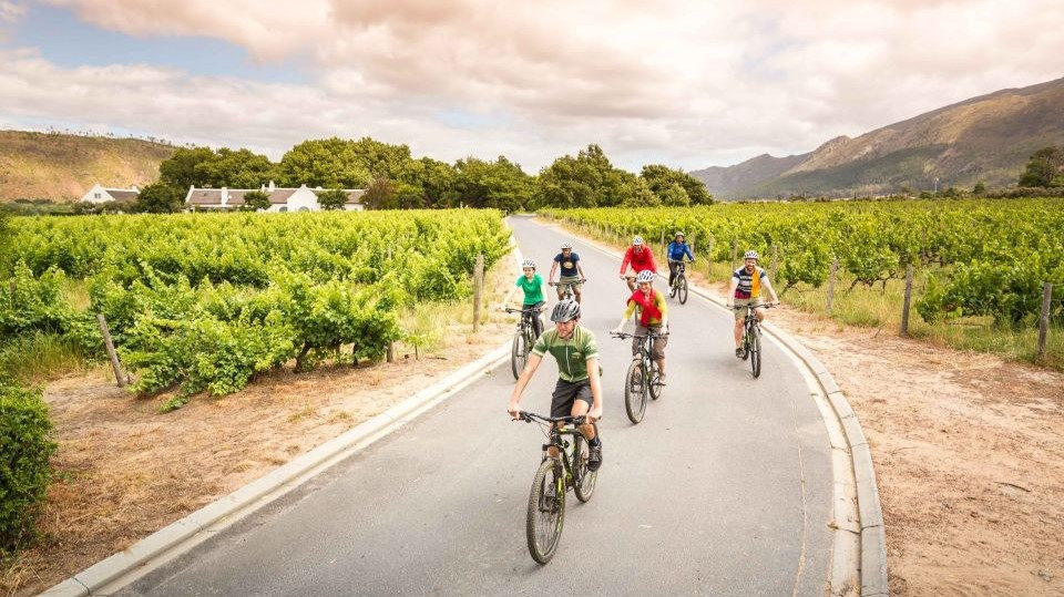 Winelands Cycling Tour