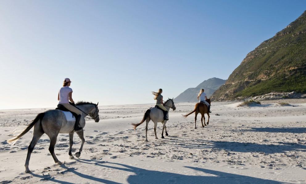 Beach Horse Riding Cape Town