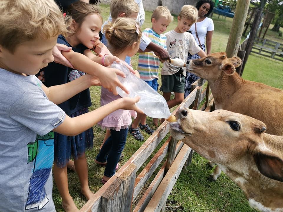 Burnside Touch Farm