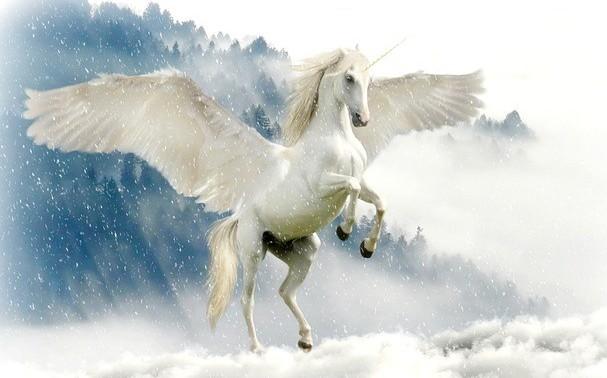 best unicorn names