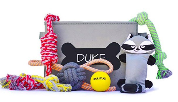Dog toys - Gift Pack birthday gift for a dog