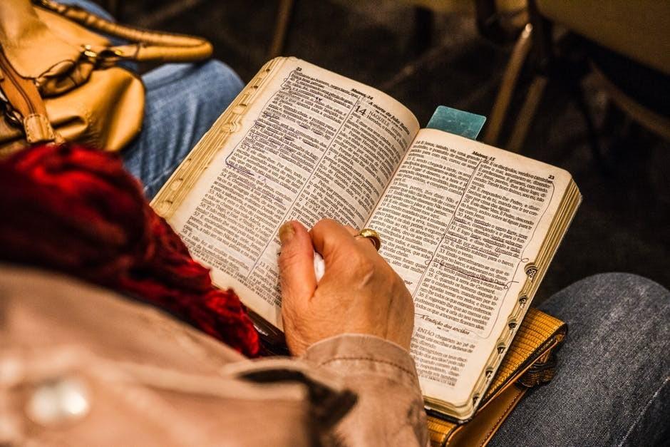 Person reading German bible