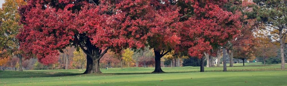 Highland Meadows Golf Club
