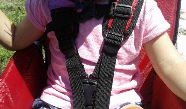 WeeHoo iGo shoulder straps