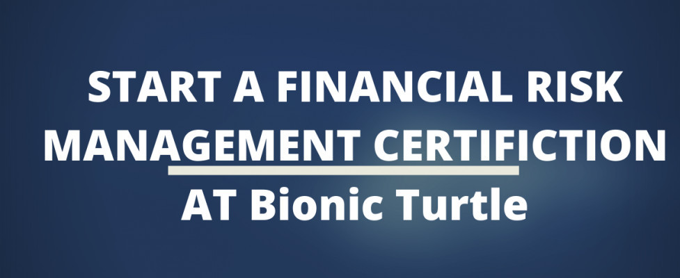 Start A Financial Risk Management Certification At Bionic Turtle