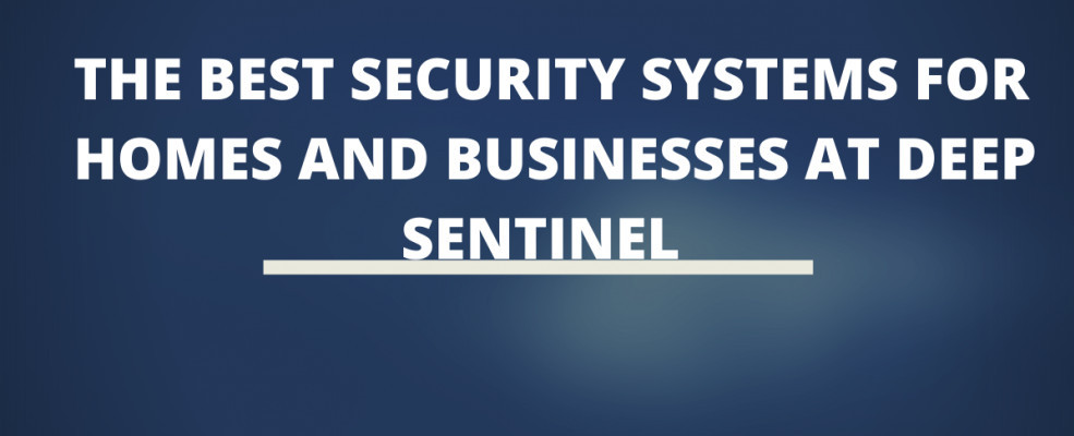 The Best Security Systems For Homes And Businesses At Deep Sentinel