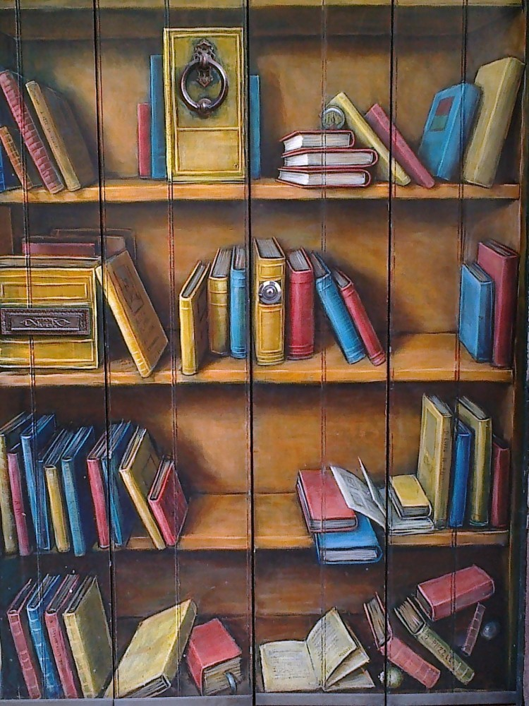 Making Your House Peaceful   Household Chore List   A colorful drawing of four bookshelves with messy books