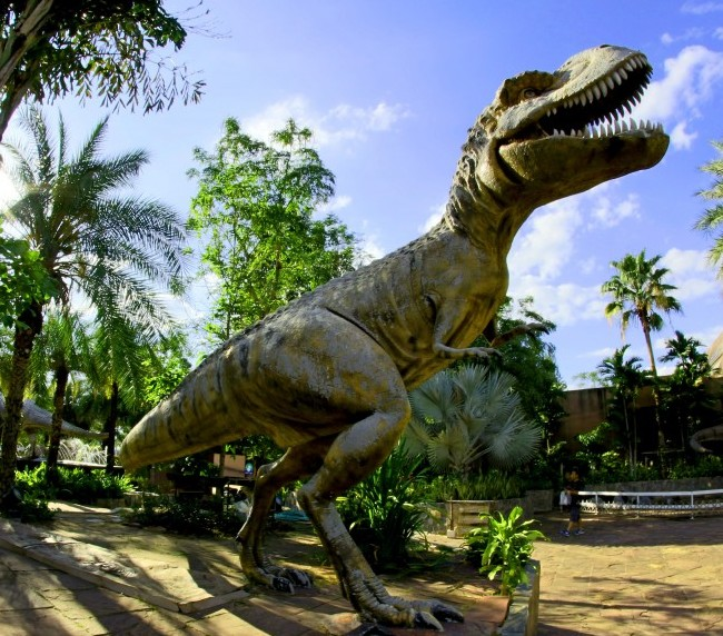 Dry Bones and Other Fossils full-size T Rex in an outdoor museum animal-architecture-art-730433