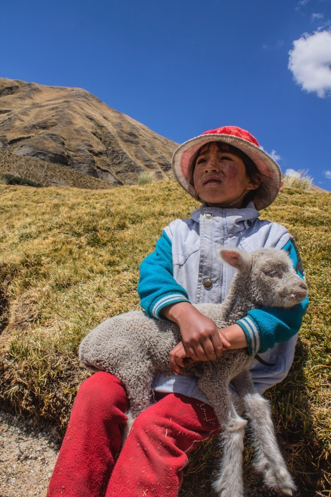 Geography Songs CD child hat lamb mountain catherine-a-g-m-735951-unsplash