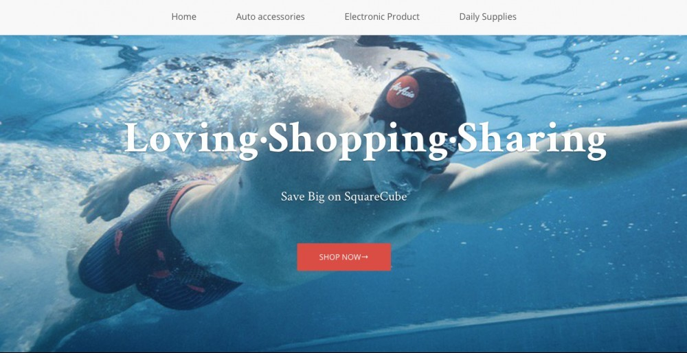 browse shopify stores