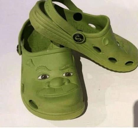 Green Bizarre Looking shoes