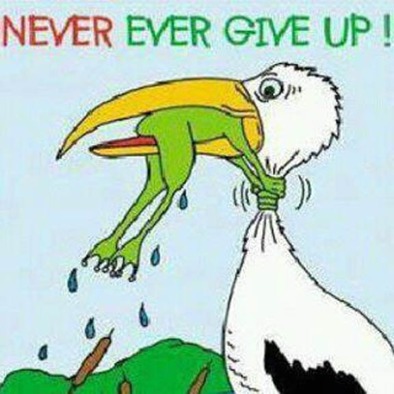 Never give up—every day is a new gift | Diabetes Health Nuts