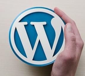 Wordpress symbol