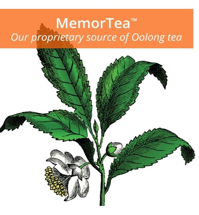 Memor Tea Herb